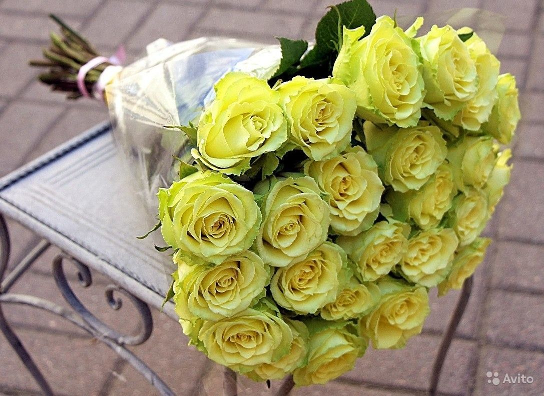 Цветов, букет роз зеленых фото