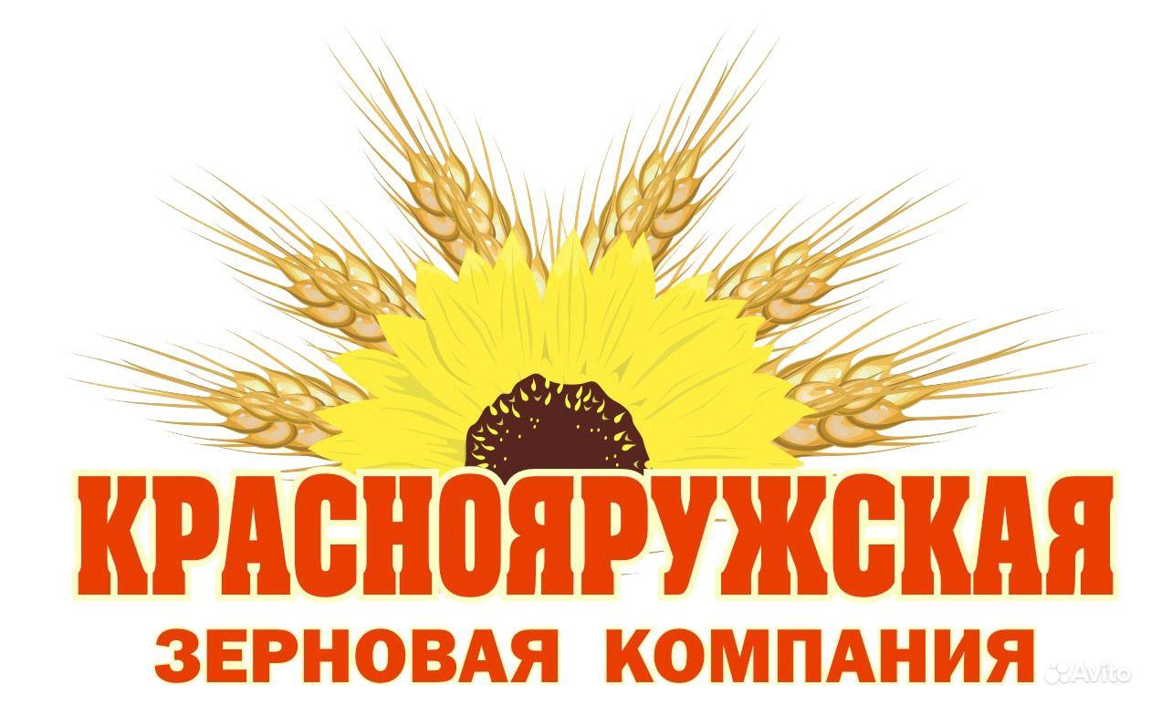 Вакансии международная зерновая компания официальный сайт создание сайтов и html программирование