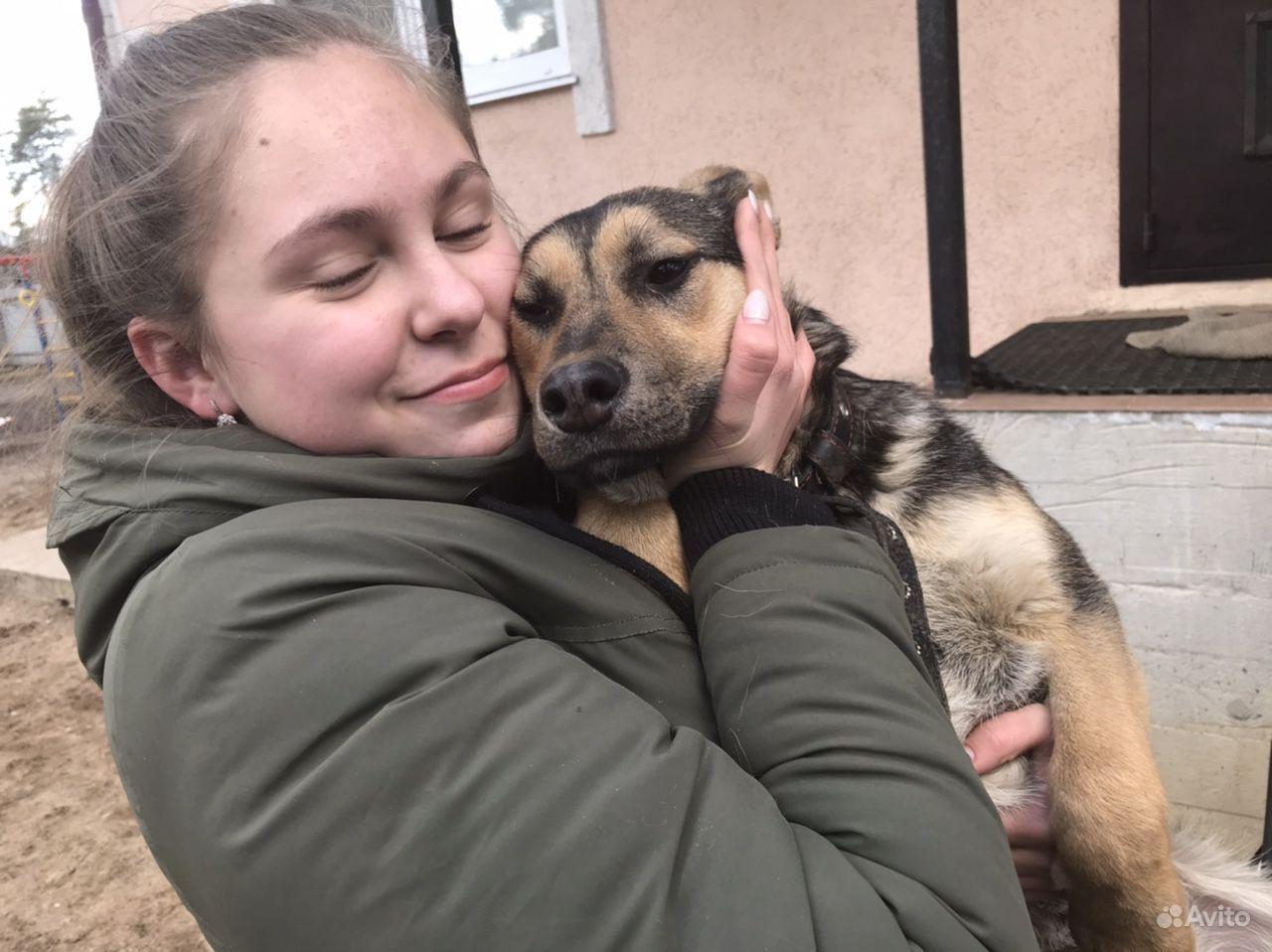 Зоогостиница Вырица (передержка собак) купить на Вуёк.ру - фотография № 3
