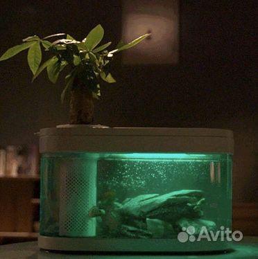 Аквапоника - умный аквариум купить на Зозу.ру - фотография № 1