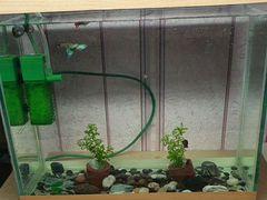 Декор И принадлежности для аквариума