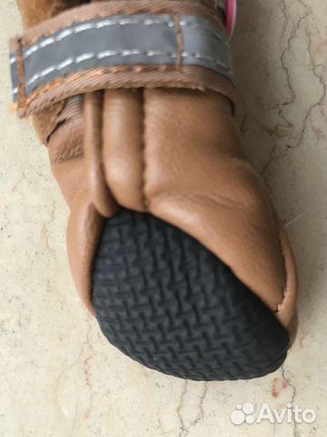 Обувь для собак (новая) 89219981571 купить 4